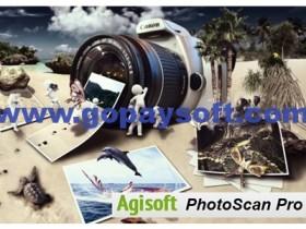 Agisoft PhotoScan Professional 1.4.5中文破解版