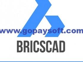 Bricsys BricsCAD Platinum 19.1.07.3破解版