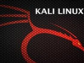 Kali Linux 2019.1系统
