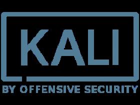 Kali Linux 2019.2 系统