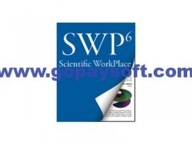 MacKichan Scientific Workplace 6.0.29破解版
