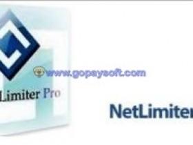 NetLimiter Pro 4.0.38.0 Enterprise破解版