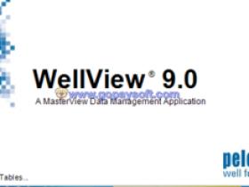 WellView 9.0钻完井数据分析管理软件