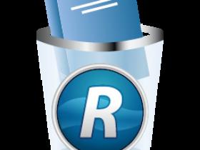 Revo Uninstaller Pro 4.1.0 Multilingual破解版