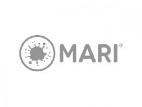The Foundry Mari 4.2v2破解版