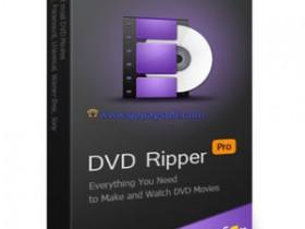 WonderFox DVD Ripper Pro 11.1中文破解版