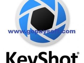 Luxion KeyShot Pro 8.2.80中文破解版