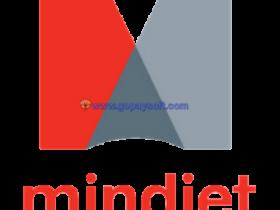 Mindjet MindManager 2019 v19.0.290官方简体中文+序列号