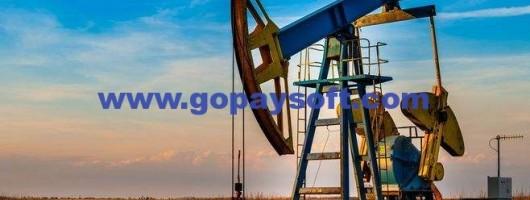 石油专业软件需要请发邮件洽谈:vip@gopaysoft.com