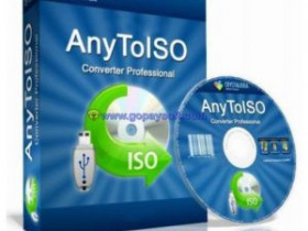 AnyToISO Professional 3.9.3 Build 631破解激活