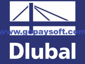 DLUBAL Craneway 8.19.01破解版