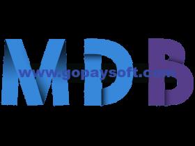 MDBootstrap Pro 4.8.8 Mega Bundle破解版