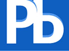 PlanBridge 3.7破解版 for Microsoft Project