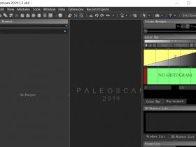 Eliis PaleoScan 2019.1.0 破解版